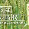スーパー酵素(玄米酵素食品)